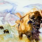 Bison Vision