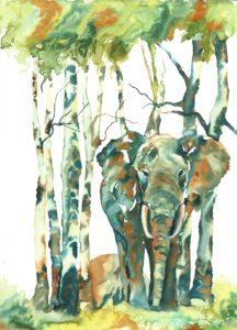 aspen elephant